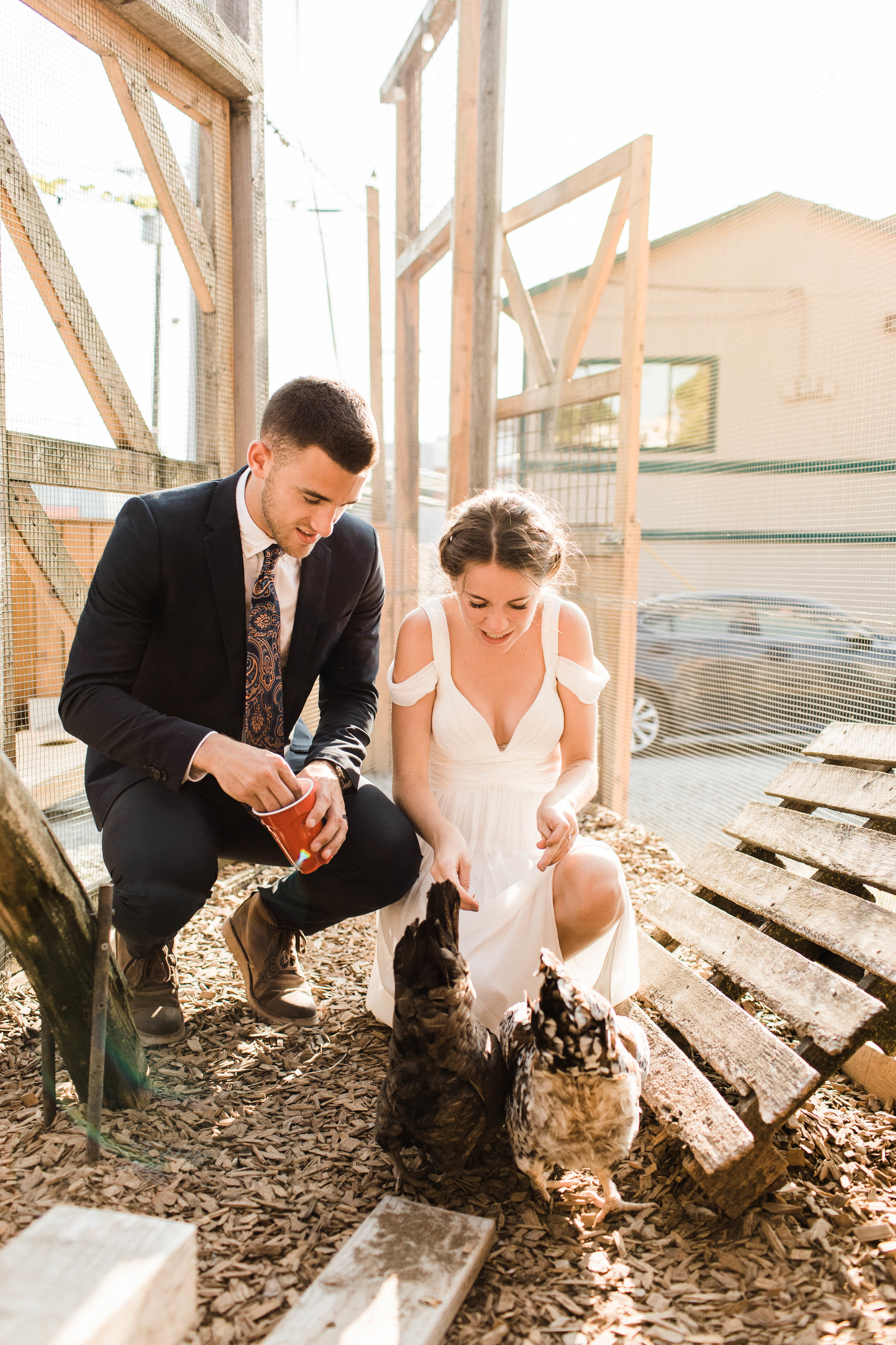 couple feeding the chickens at Humble Pie in Seattle Washington after their Mt Rainier elopement | adventure wedding photographers