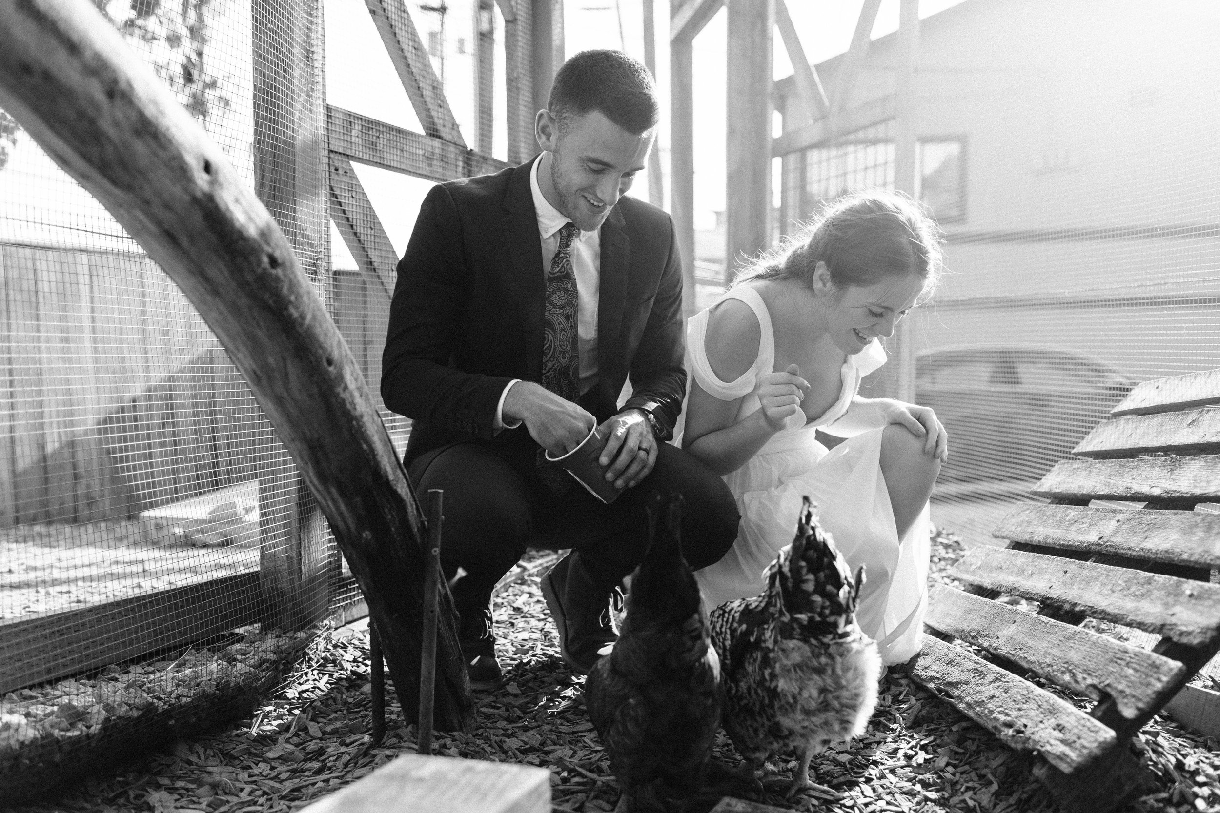 couple feeding the chickens at Humble Pie in Seattle Washington after their Mt Rainier elopement | Washington adventure wedding photographers