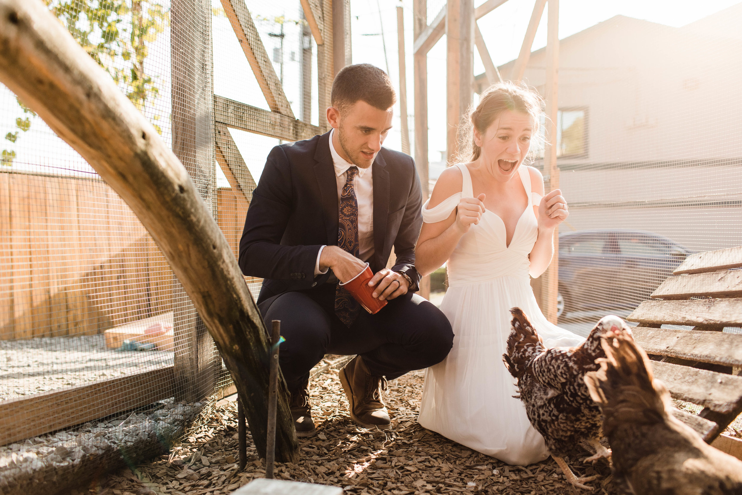 couple feeding the chickens at Humble Pie in Seattle Washington after their Mt Rainier elopement | Washington state adventure wedding and elopement photographers
