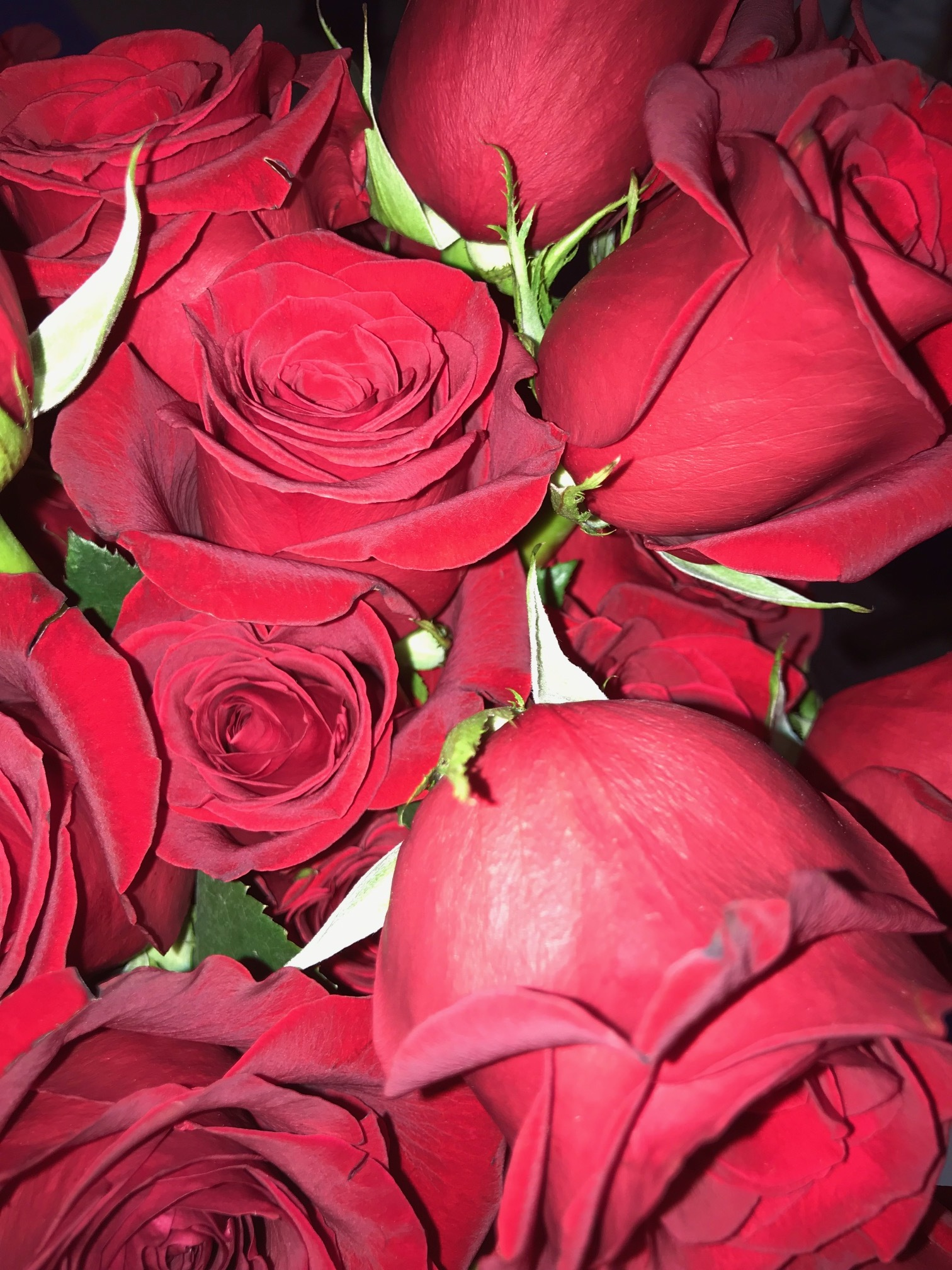 Want to profess your love to your favourite delegates? Stop by the 5th floor to send a rose with a personal note attached! Only $5 each!