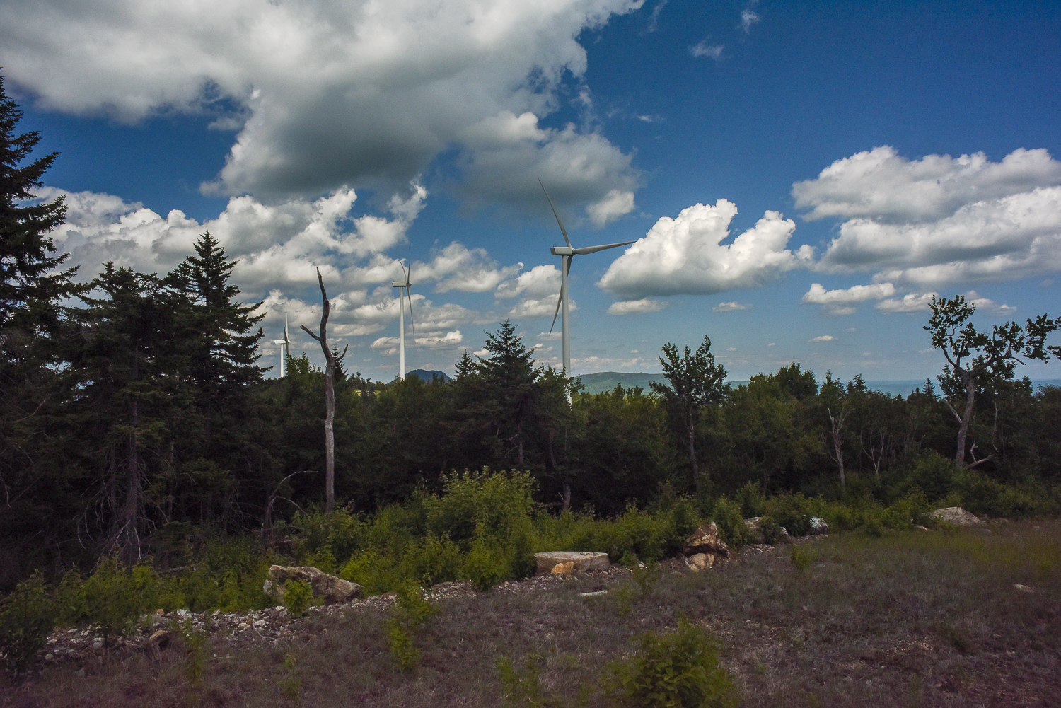 windfarm (6 of 17).jpg