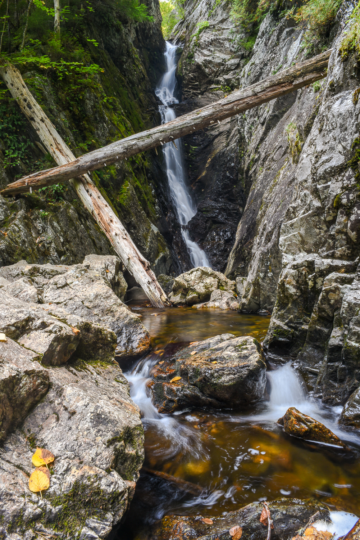 Dunn Falls (3 of 10).jpg