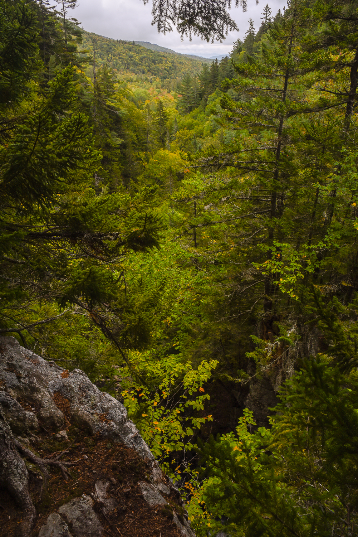 Dunn Falls (6 of 10).jpg