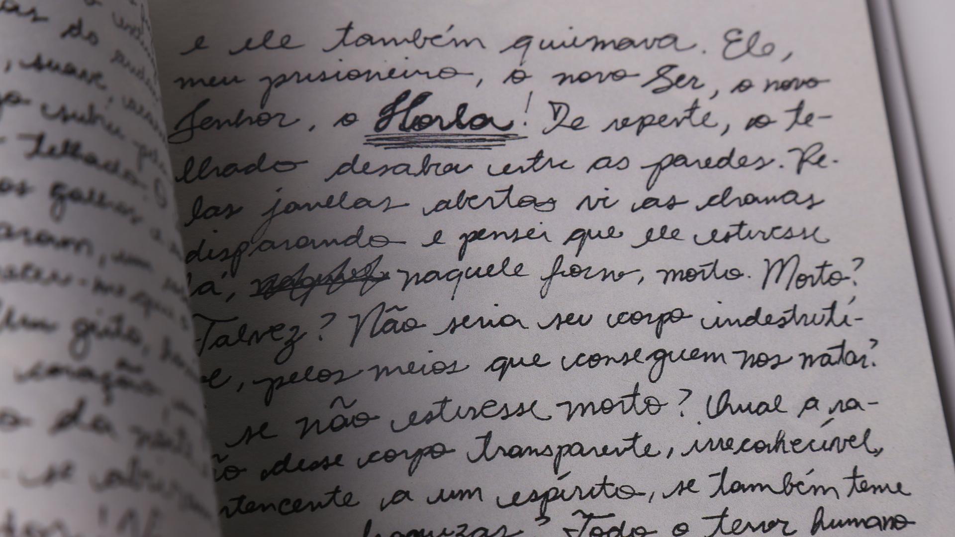 O conto, que é contado em primeira pessoa, foi escrito à mão, como num diário.