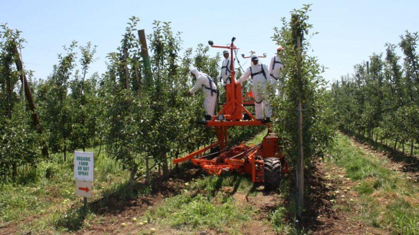 picking-platform-jjdagorette-harvester-860x483.jpg