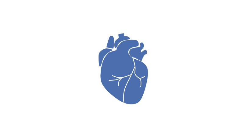 Medis® Suite MR - Este paquete ofrece aplicaciones especializadas para la cuantificación y post-procesamiento sobre imágenes cardiovasculares de resonancia magnética.