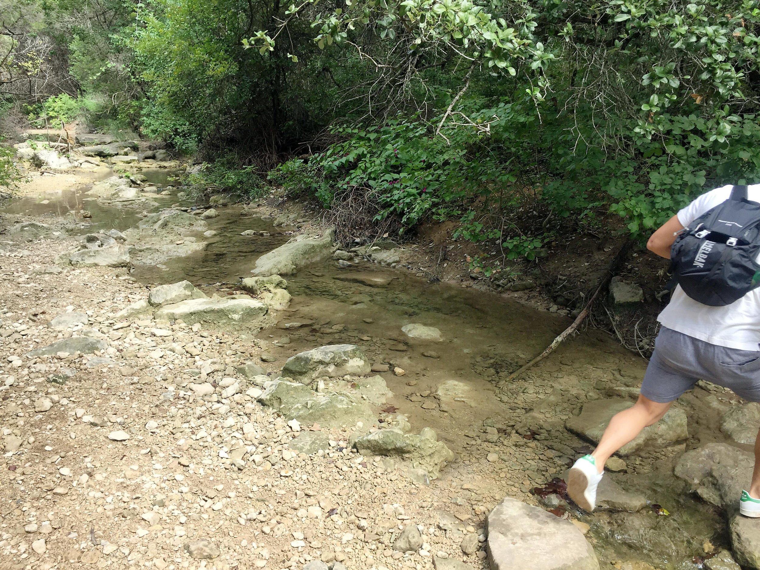 stream hike.jpg