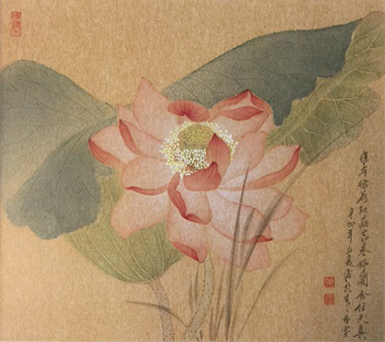 Late-Bloom Lotus with Pond Grass