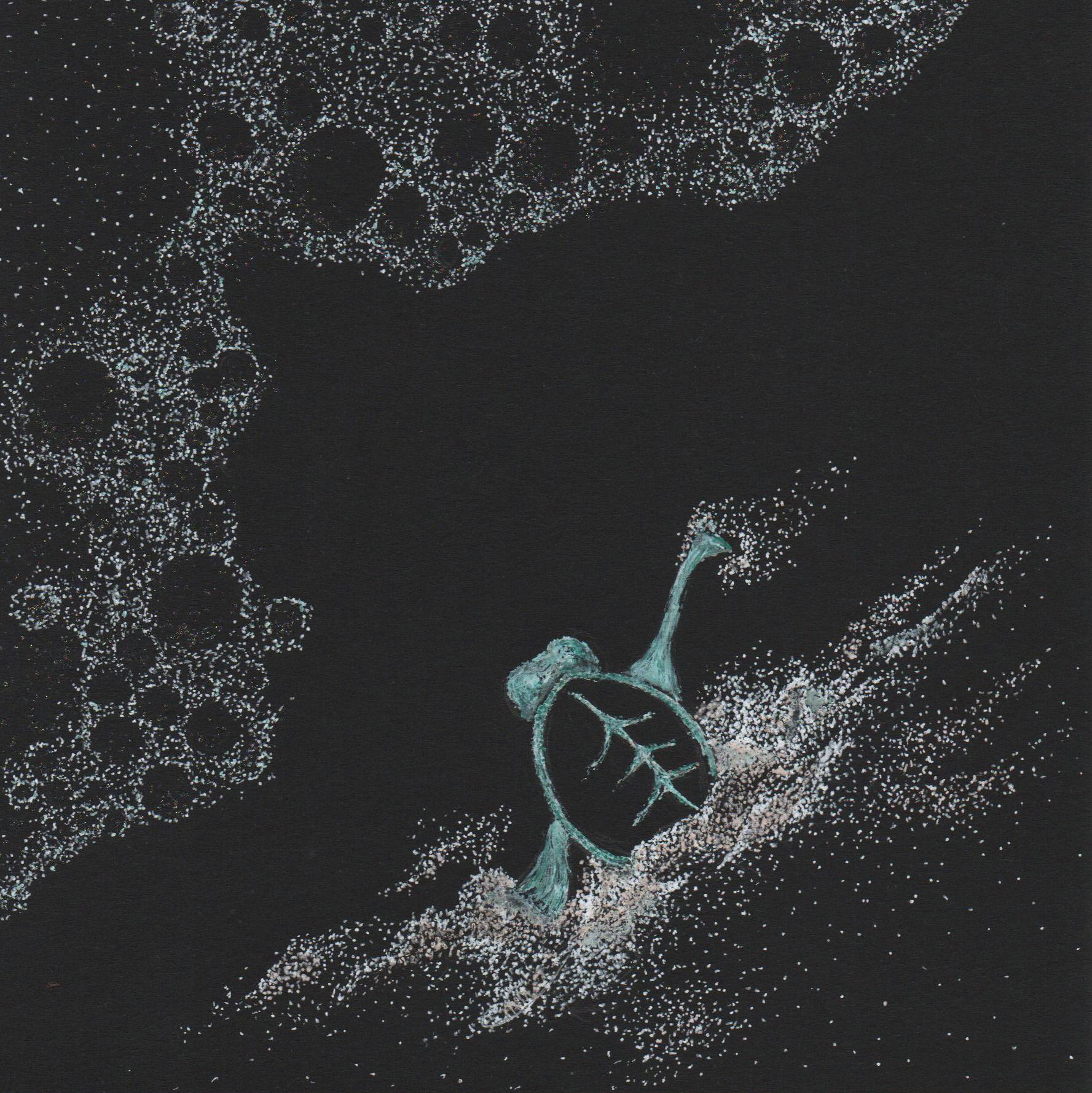 sea foam turtlle cropped.jpg