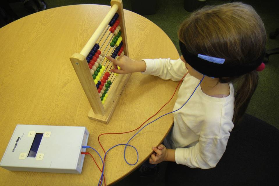 The Cognition, Learning, and Plasticity Lab at Oxford University