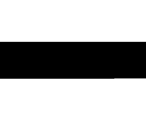 snidel logo.png