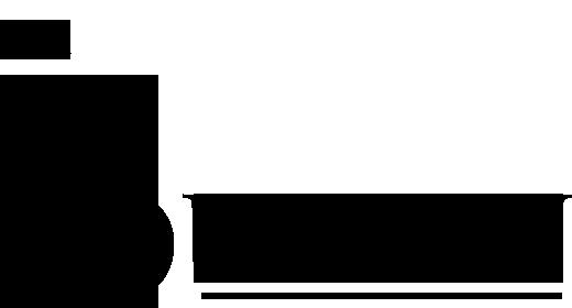 THE BUREAU LOGO (4).png