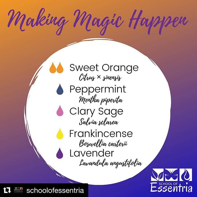 #Repost @schoolofessentria ・・・ Magic is in the air 🌟⠀ ⠀ The secret to one of the founder's motivation ❤️⠀ ⠀ Can you guess which one uses this blend to keep motivated? 🤔⠀ ⠀ Do you have oils that you find bring you focus in moments of chaos? 🤯⠀ ⠀ #aromatherapycertification⠀ #essentria⠀ #essentialoileducation ⠀ #certifiedaromatherapist ⠀ #expertknowledge ⠀ #EssentialOilSafety⠀ #EssentialOils⠀ #schoolofessentria #diffuser  #diffuserblends  #diffuserblend