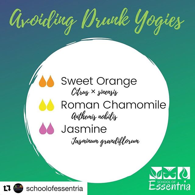 "#Repost @schoolofessentria with ・・・ Kids who don't sleep 🤷‍♀️ The challenge is real 🙄 but we love them anyways 🤣  Ever see those memes about how trying to get your ""not tired"" kids to bed is like trying to put your drunk friend to bed. ""There's singing, requests for water, incoherent babbling, crying, some weird yoga poses, hiccups and they finally pass out!"" This blend name was inspired by all that 🤣  But it should help avoid some if not all that too 😉 so sleep tight tiny demanding yogies ✌ while your parents gain back a little sanity 🥰  Let us know how it went 👇  #diffuser #diffuserblends  #aromatherapycertification #essentria #essentialoileducation  #certifiedaromatherapist  #expertknowledge  #EssentialOilSafety #EssentialOils #schoolofessentria⠀⠀⠀⠀⠀⠀ #aromatherapy  #essentialoils #certifiedaromatherapist #botanicalbeauty #aromatherapyeducation #essentialoil #herbalmedicine #plantmedicine #plants #botany #aromatherapy #aromatherapist #aromatherapyschool #aromatherapyrecipes"
