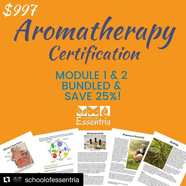@schoolofessentria ・・・ 25% bundle discount WOOT 🤘⠀ ⠀ Our online 💻 course provides an amazing opportunity to learn what professional aromatherapy is all about 🙌⠀ ⠀ It is over 400 hours of aromatic sciences 🧪 that teaches safety, physiology, anatomy and chemistry.⠀ ⠀ With this course you will be qualified 👩‍🔬 to practice and register with aromatherapy associations paving the way for over 26 years.⠀ ⠀ We are NAHA level 3 accredited 🌱⠀ ⠀ Will you be joining us on this learning journey❔⠀ ⠀ To learn more or sign up visit:⠀ https://buff.ly/2I48iDU⠀ ⠀ #BotanicalAlchemy #catassistant #wellnessplan #reflexologycourse #aromatherapycourse #theTAisaCat #essentialoils #aromatherapy #aromatherapycourses #sleep #hotflashes #bartholincyst #allergies #hormonebalance #depression #nausea #headache #moodswings #leakygut #Frankincense #TheKingOfOils #KingOfOils #Aromatherapy #AromatherapyCourse #MassageTherapy #BackToSchool #EssentialOils #Therapeutic #TherapeuticMassage #BoswelliaCarterii