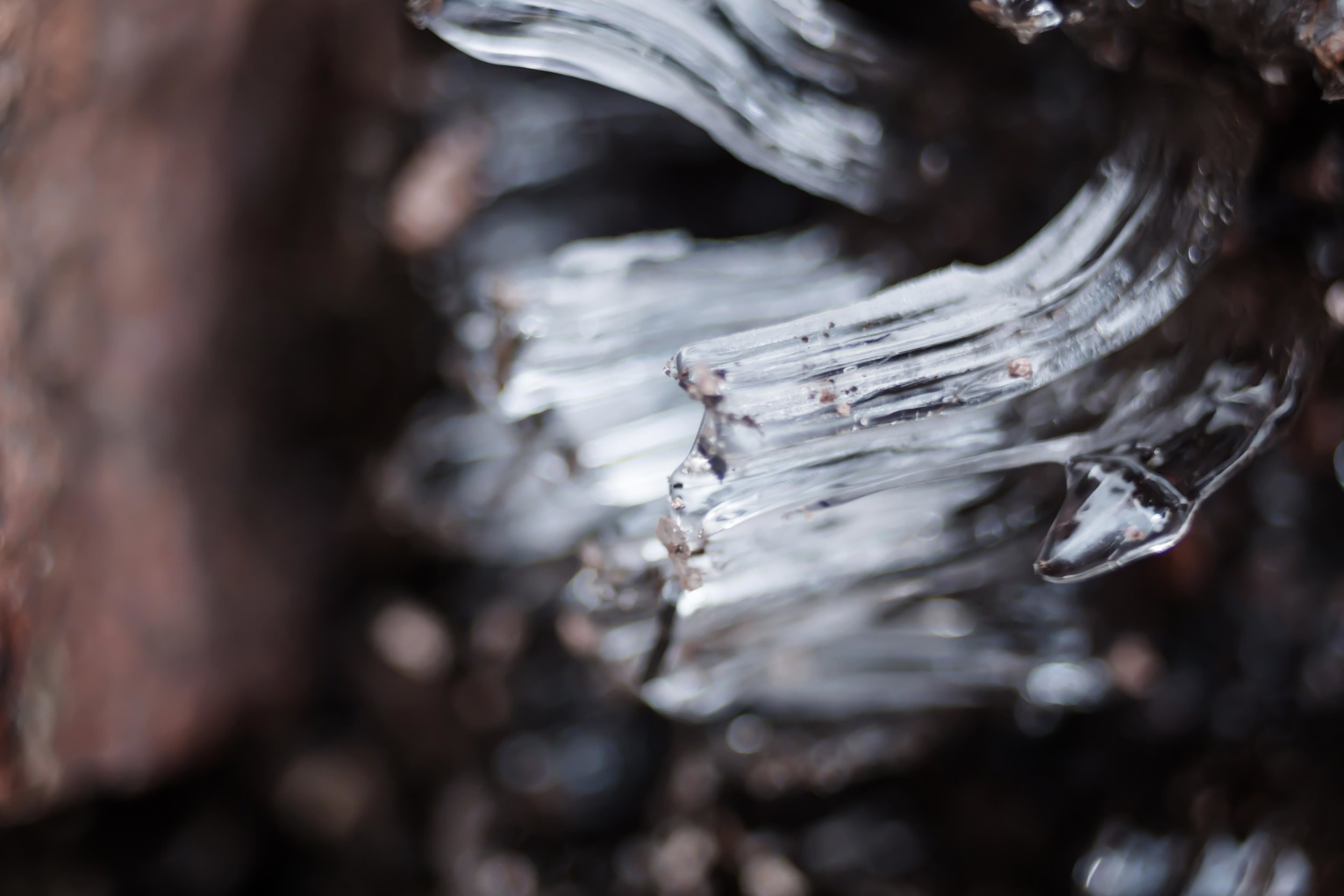 skuleskogen-24.jpg