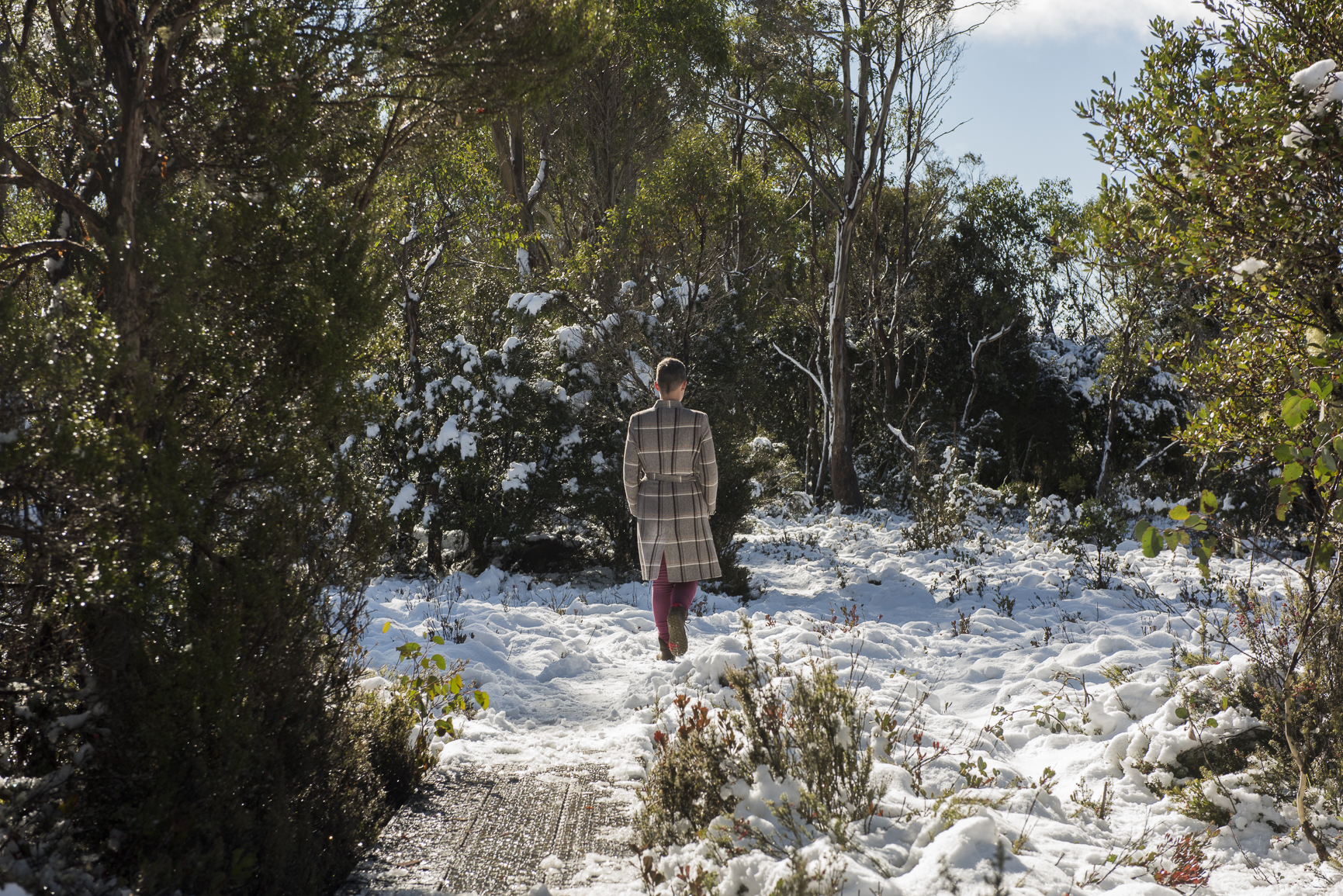 Artist Jessie Pangas, Cradle Mountain 2017. Photo By Amy Brown(2).jpg