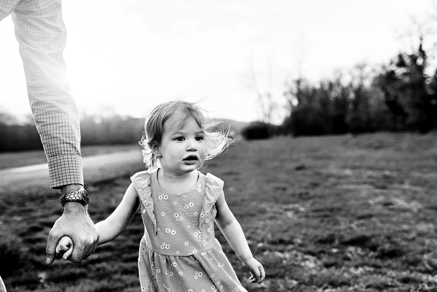 daughter holding dads hand in field at haddam meadows in haddam connecticut lifestyle maternity photography