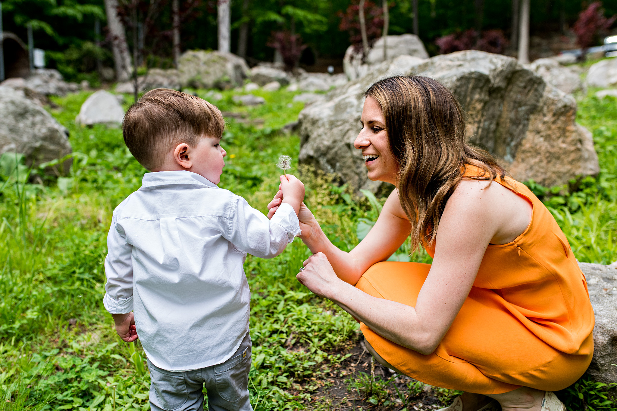mom blowing dandelion with child ct child photography