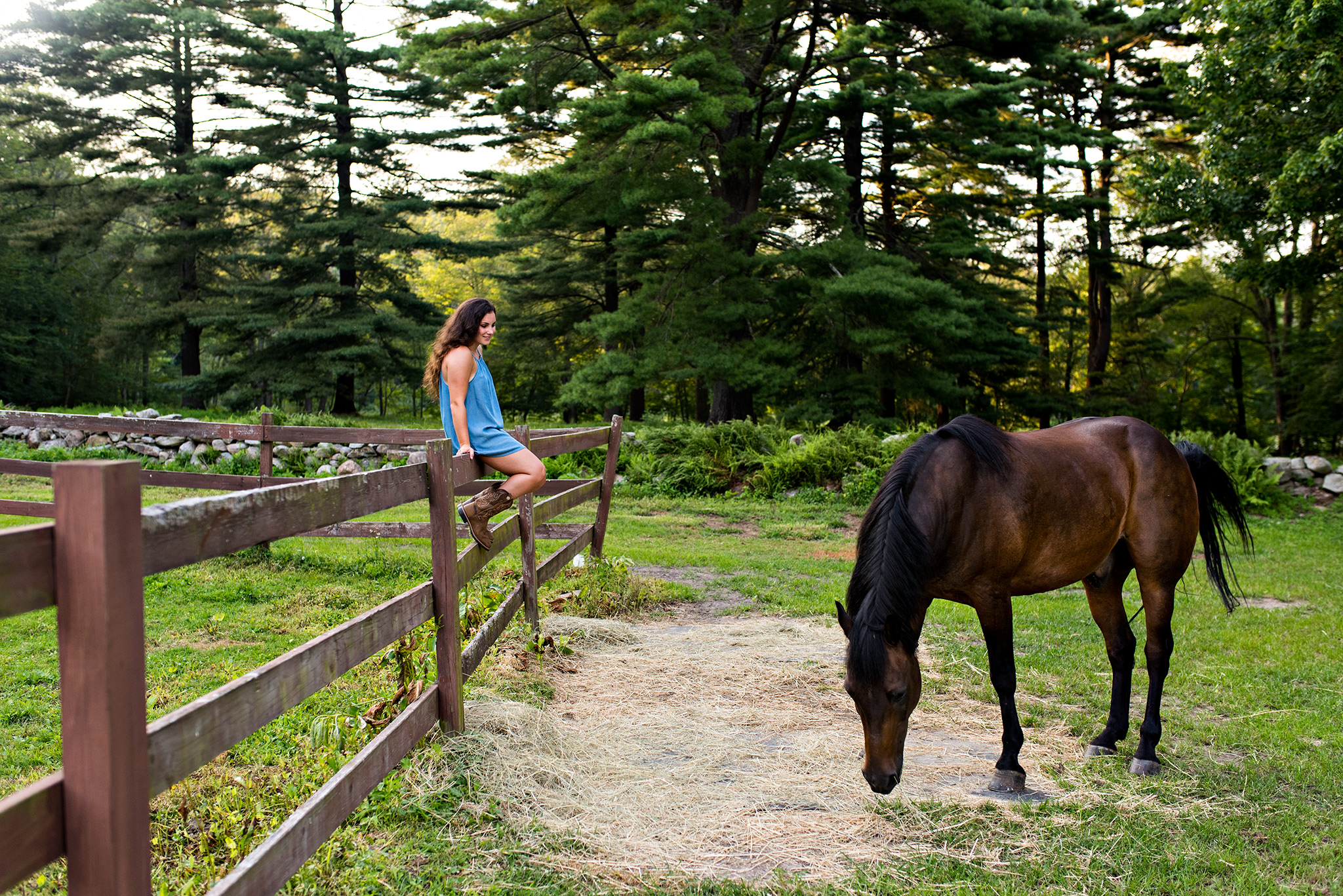 ct senior portrait photography with a horse on a farm