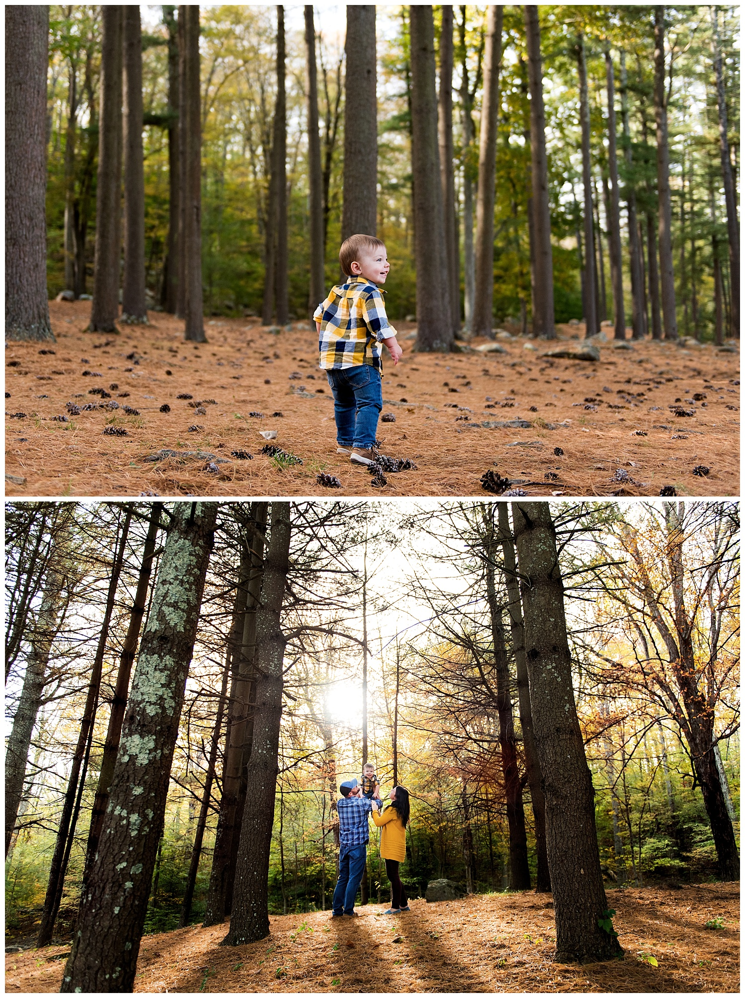ct family photography in fairfield county.