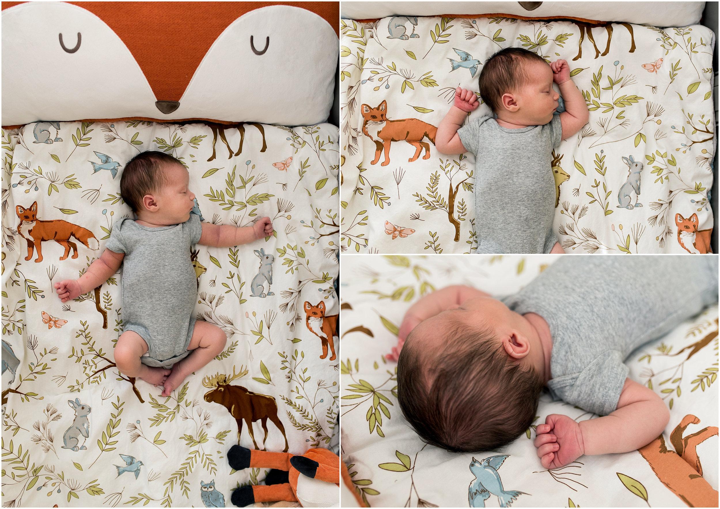 newborn photographer in connecticut. ct newborn photographer