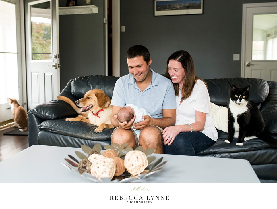 in home lifestyle newborn photography with pets on the couch