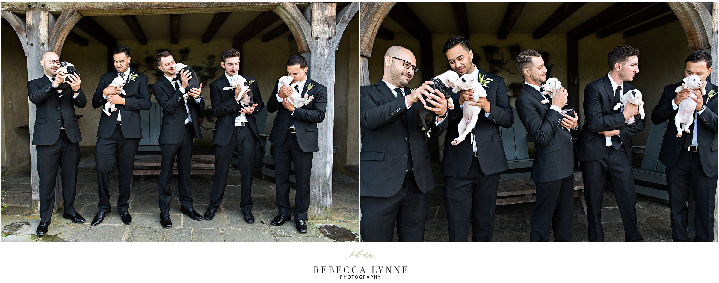 groom and groomsmen with newborn puppies at wedding
