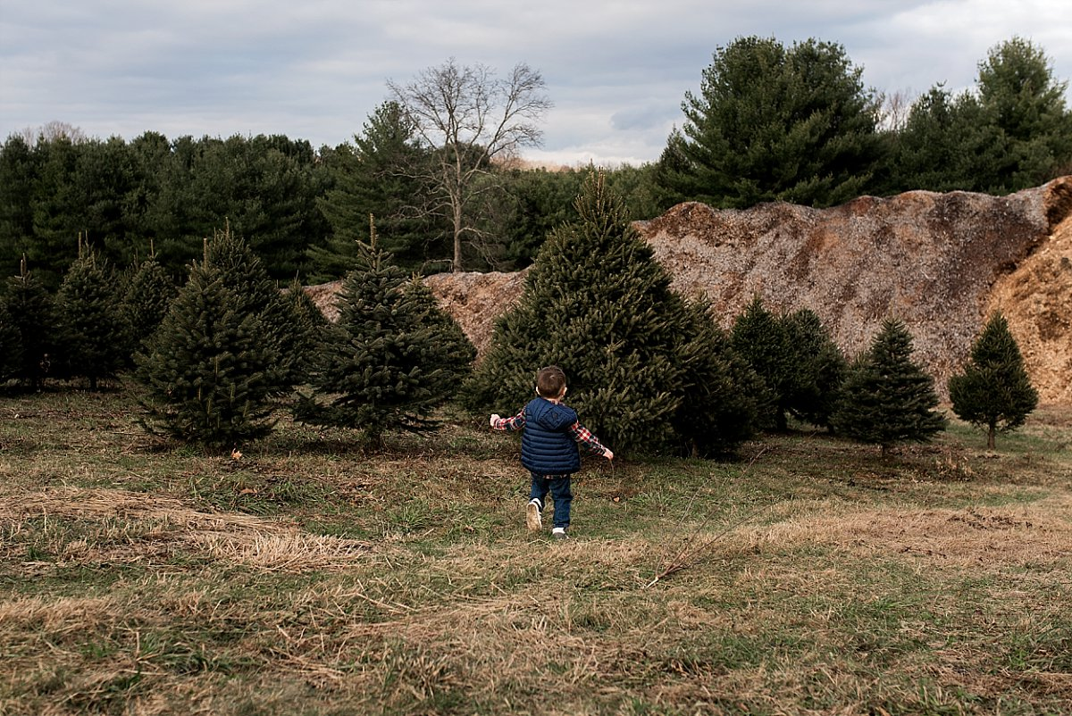 christmas tree farm family photography connecticut
