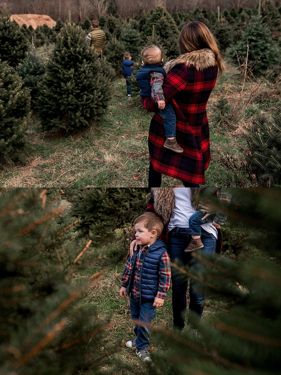 candid family photography at the tree farm in CT