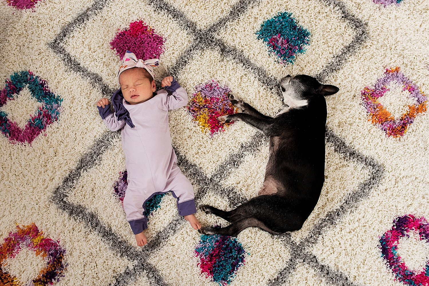two week old baby girl laying on a rug with her dog during newborn photography in CT