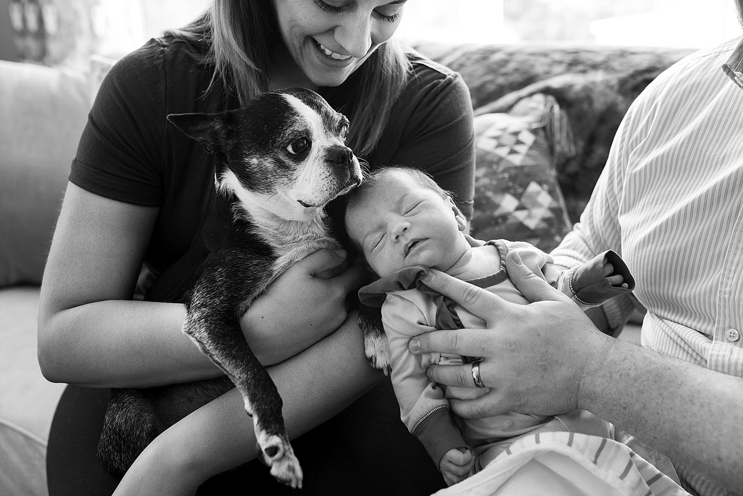 Connecticut baby with their family dog during newborn photography