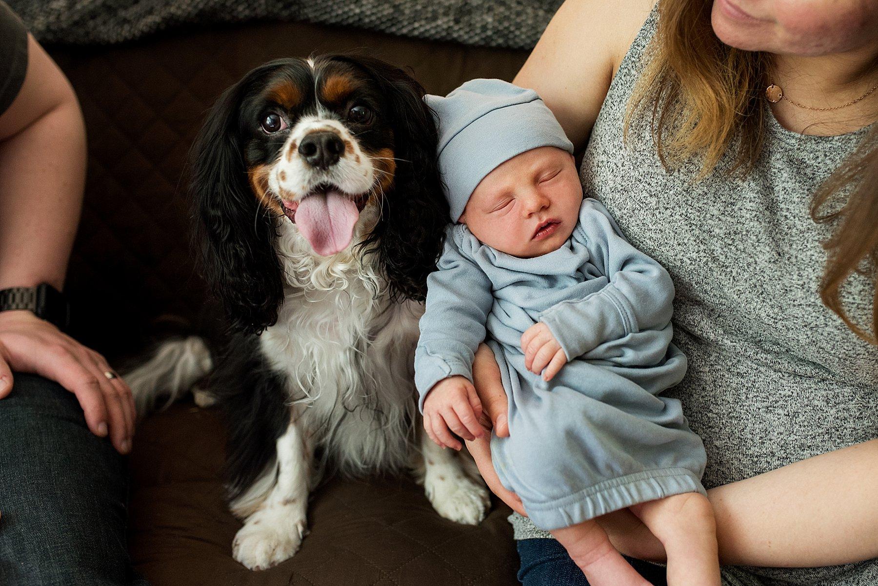 newborn with puppy portrait. newborn photography CT