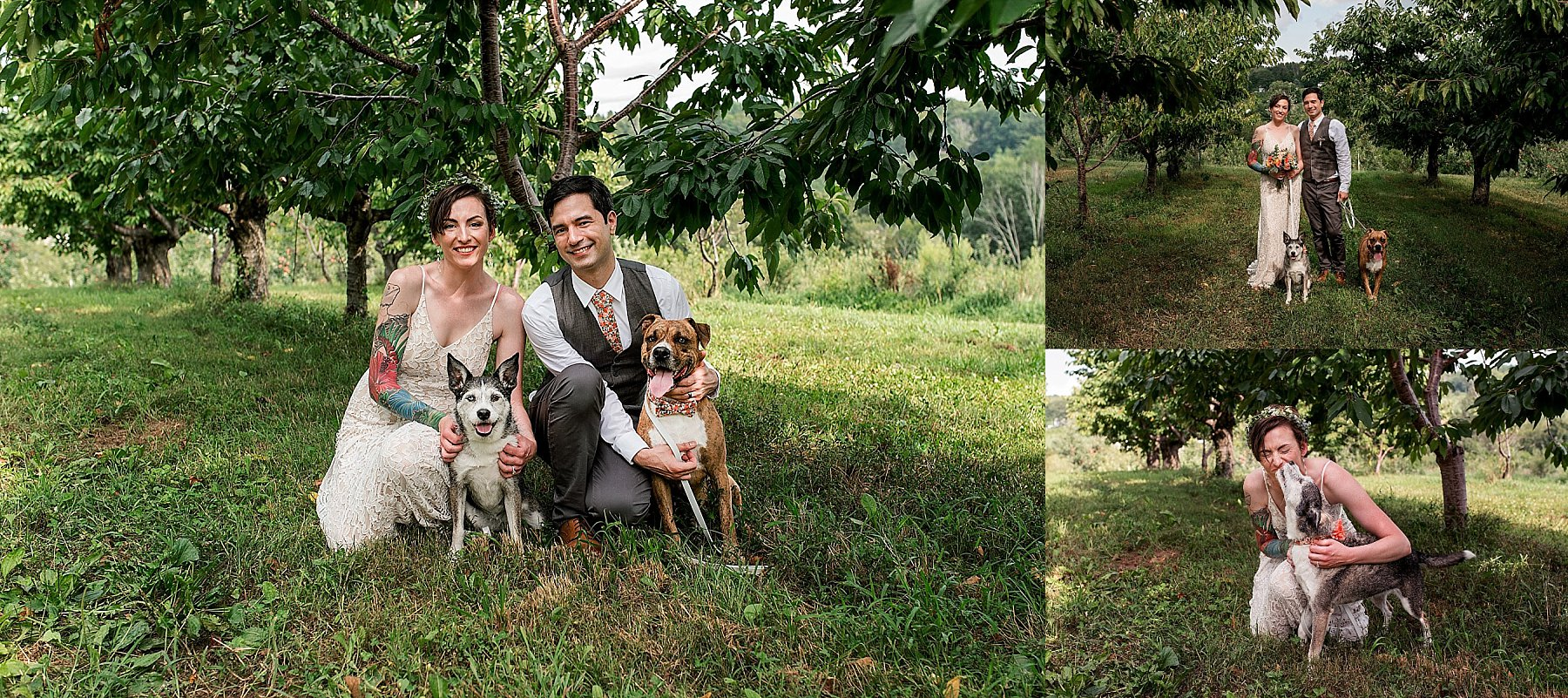 Connecticut bride and groom with their dogs in their wedding day