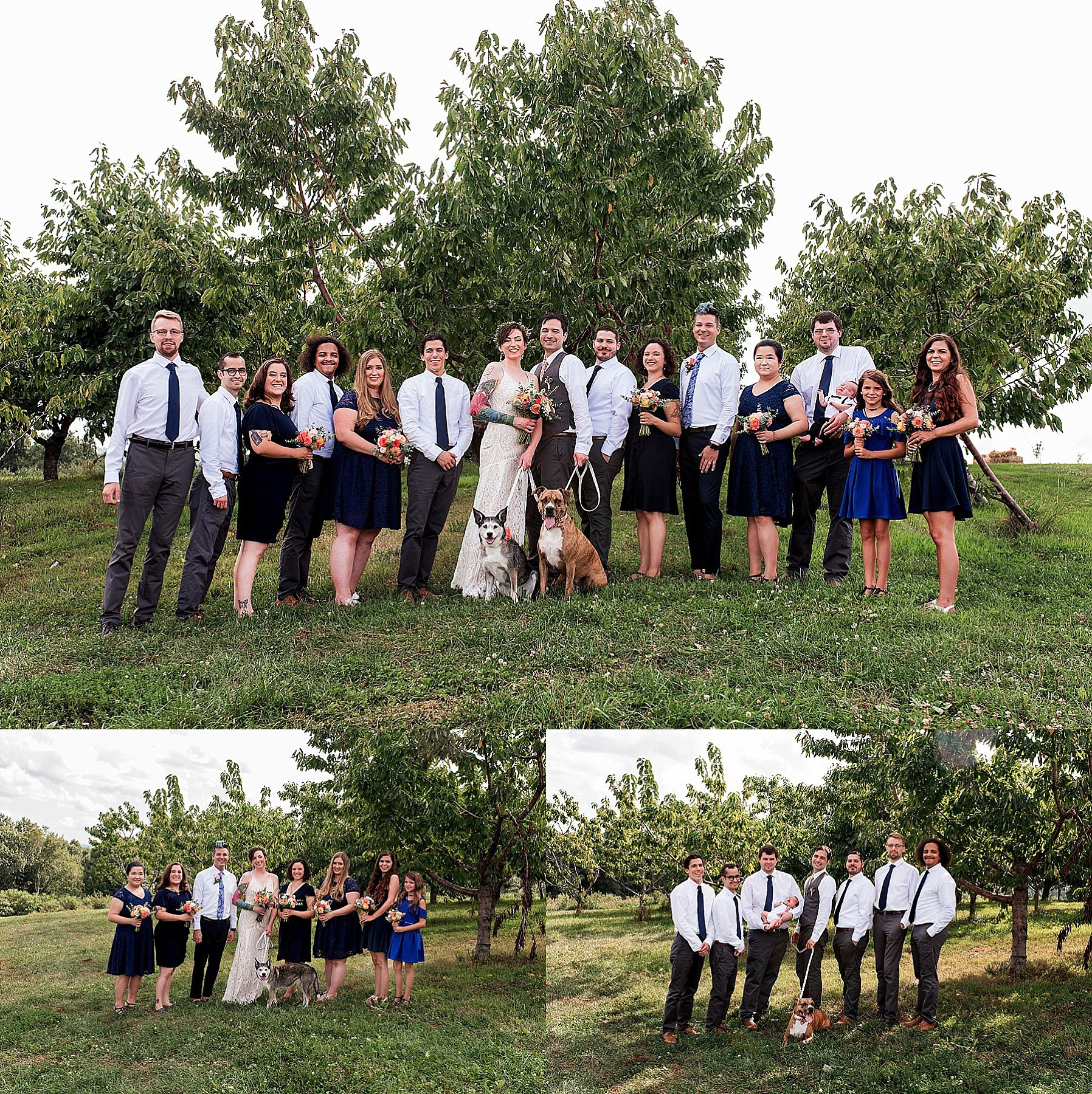 wedding party photography with family dog