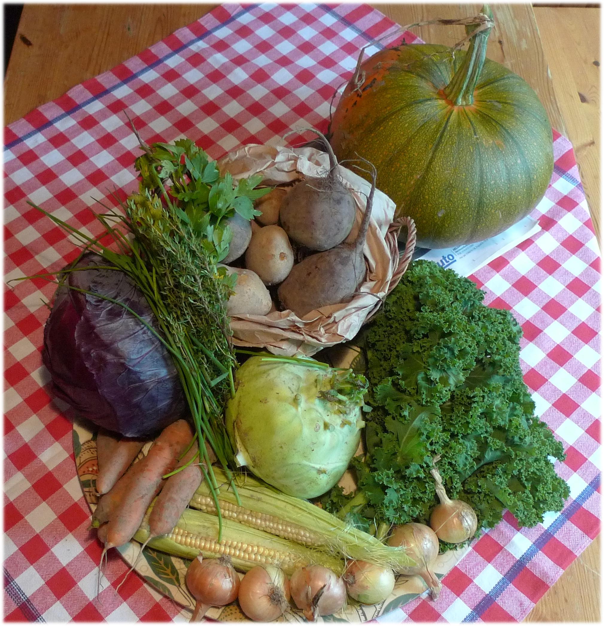 17.9.2013: kurpitsa 4740 g, punakaali 1855 g, porkkana 322 g, maissi, 343 g, kyssäkaali 1340 g, sipuli 334 g, lehtikaali 200 g, punajuuri 713 g, peruna 2300 g ja yrttinippu.
