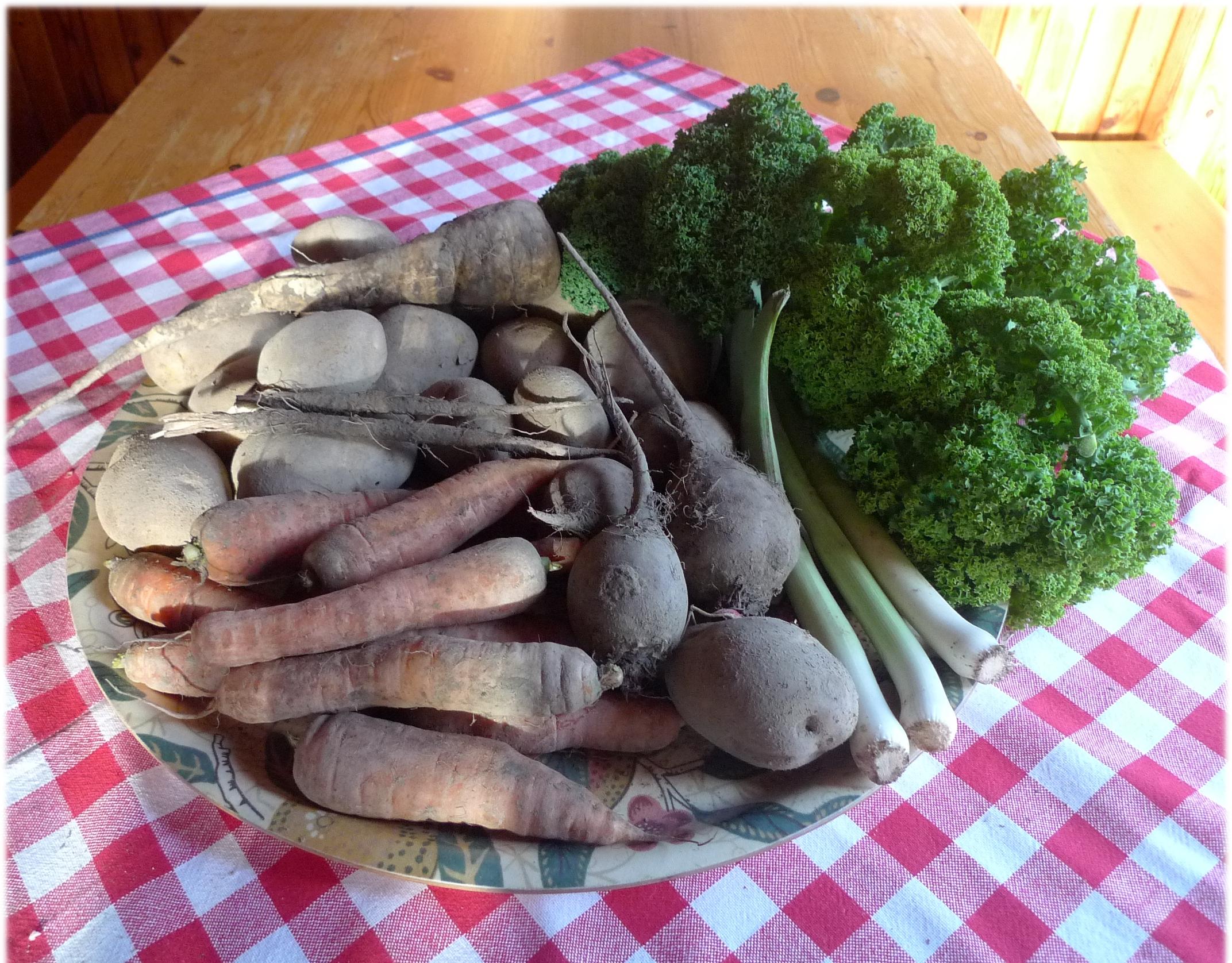 29.10.2013: lehtikaali 228 g, palsternakka 193 g, mustajuuret 18 g, punajuuret 464 g, purjot 181 g, porkkanat 713 g ja perunat 2006 g.