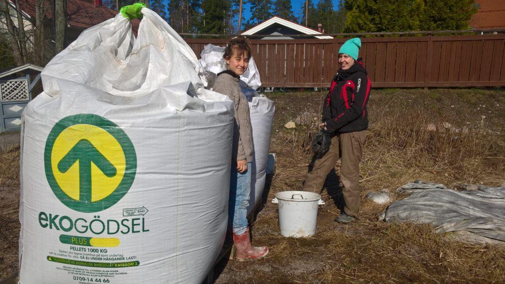 Tau ja Katja ottavat uutta luomulannoitetta herukoiden lannoitukseen