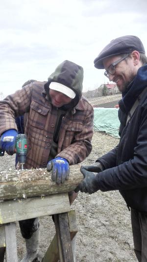 Sienikurssilla tehtiin sienipölkkyjä, joista satoa odotettavissa ensi vuonna ja toivottavasti monta vuotta sen jälkeenkin. Ensin pölkkyihin porattiin reiät…