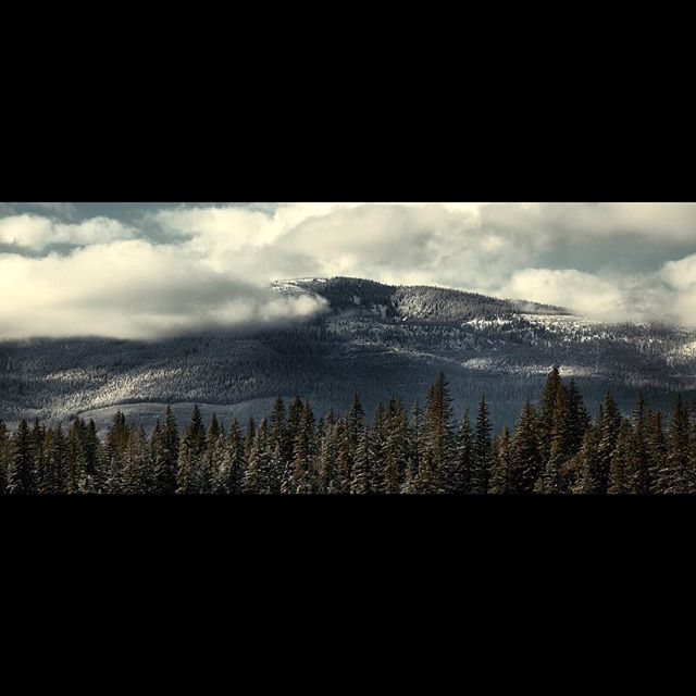 Montana . . . #colorgrade #colorgrading #tvc #filmmaking #filmmaker #indiefilm #independentfilm #davinciresolve #postproduction #art #photo #photography #videoproduction #cinematographer #cinematography #cinematic #cinema #media #framegrab #framez #dp #producer #directorofphotography #filmproduction #filming #instacinemascope #twothreenine #photocinematica #somewheremagazine #canon5dmarkiii