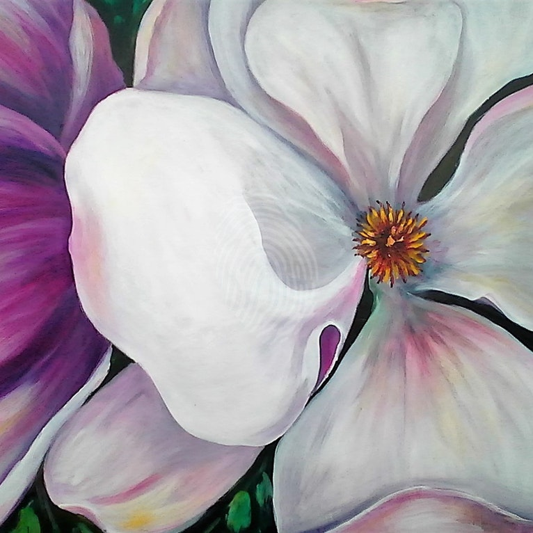 magnolia-kathryn-deboer-ipsen-bluethumb-art-48e9.jpg
