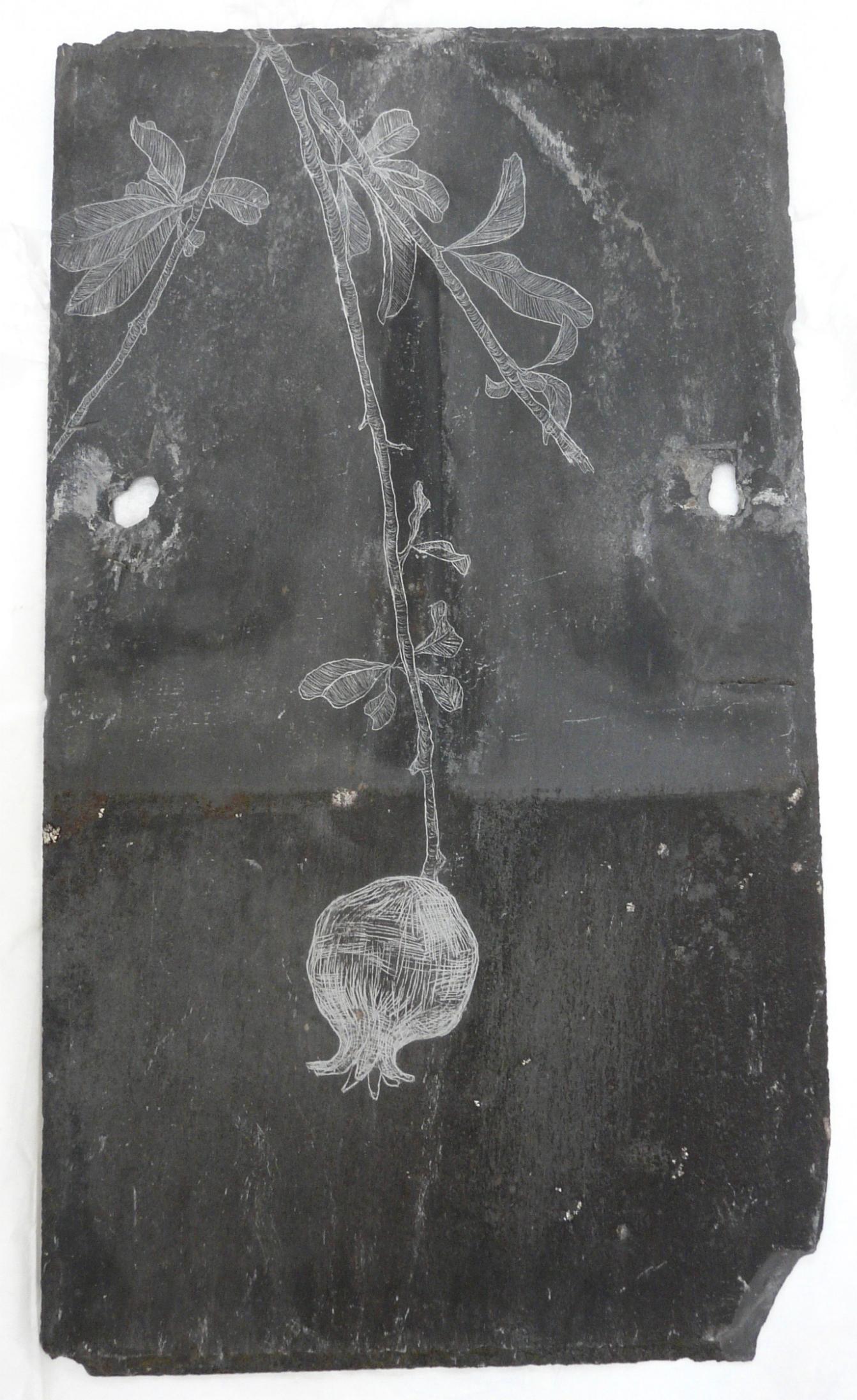 Pomegranate, Slate Engraving.