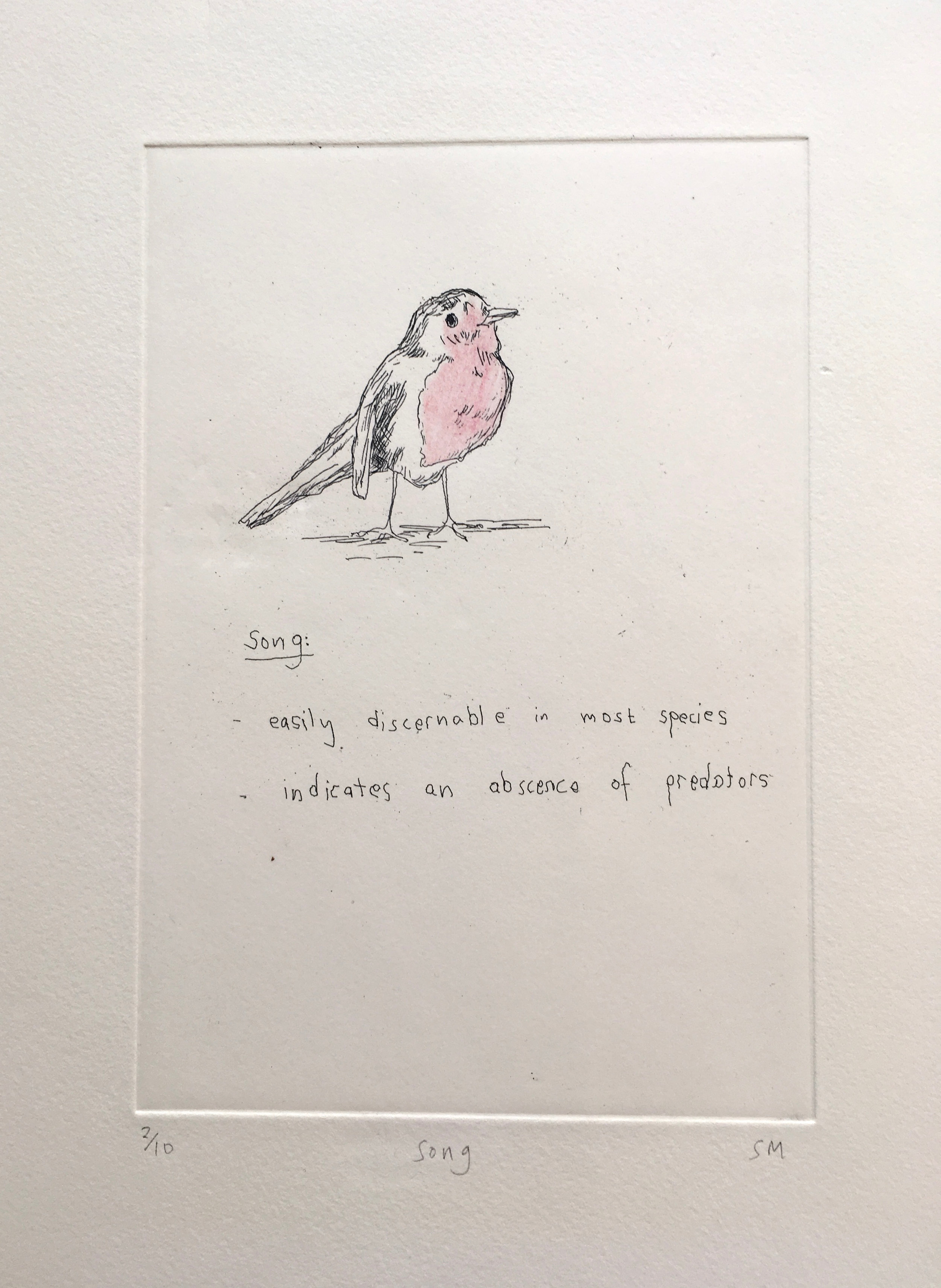 Song, Language of Song Birds V, Hand tinted etching (Etchings available).