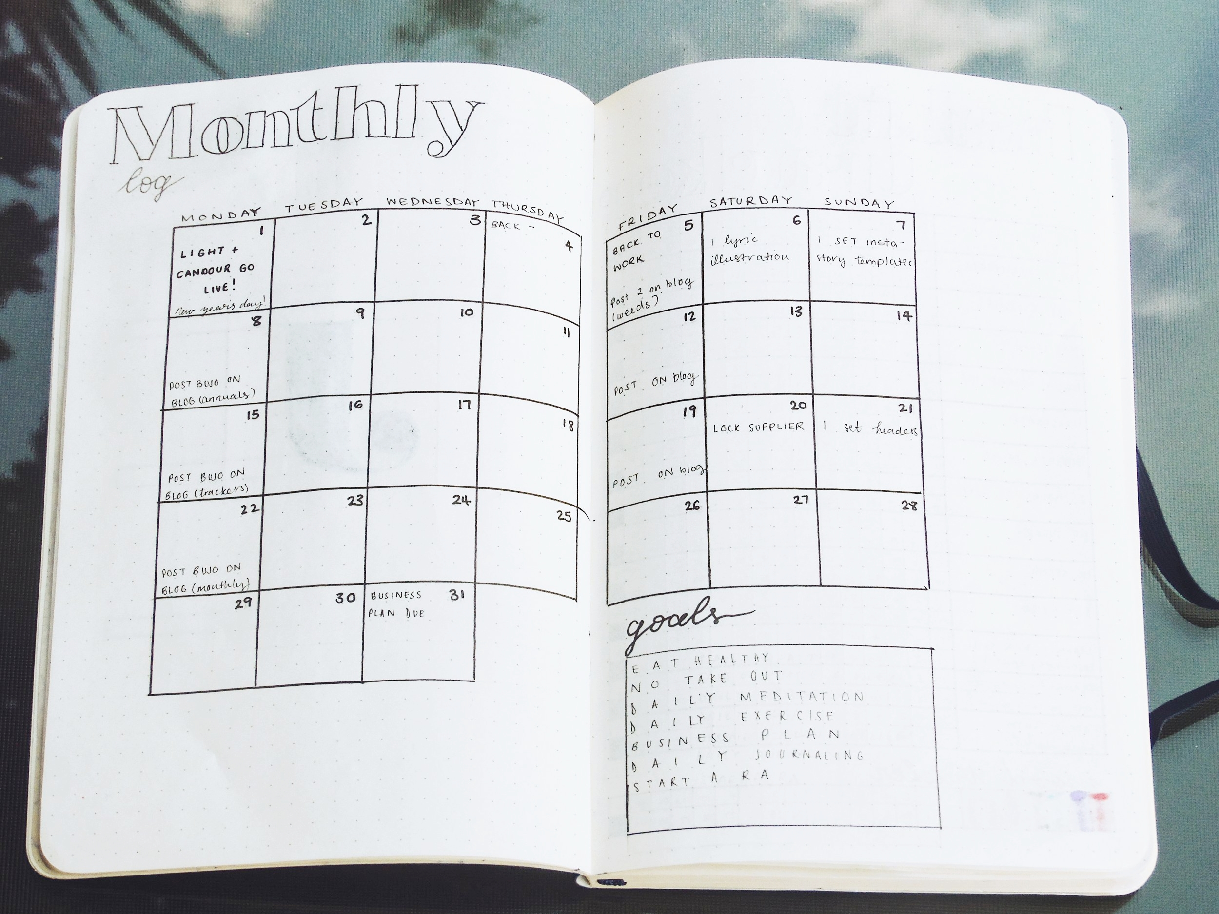 My January 2018 Monthly Log