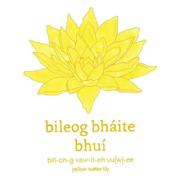 biloega-bhaite-bhui.jpg