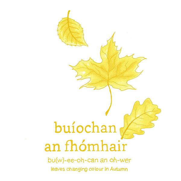 buiochan-an-fhomhair.jpg