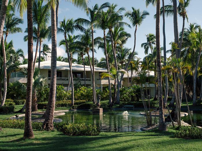 Palm trees. Palm trees everywhere!