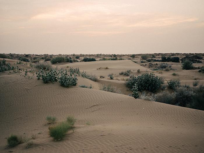 Desert around Jaisalmer after sunset.