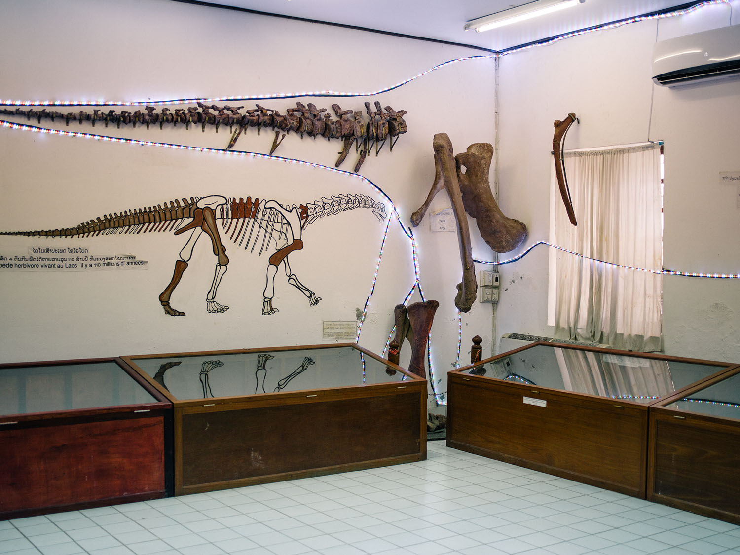 The Amazing And Spectacular Dinosaur Museum In Savannakhet The