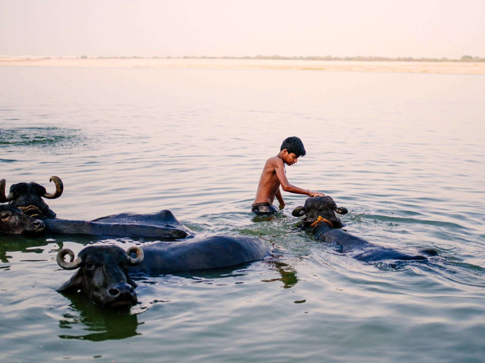 Great moment in the Ganges. Varanasi, India.